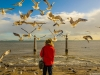 Lisbon Bird Whisperer Fine Art Photograhy 3 By Messagez.com