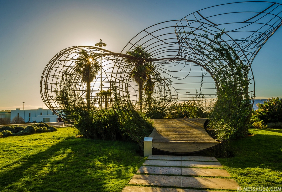 best-of-lisbon-garden-sunshine-art-photography-7-by-messagez-com_