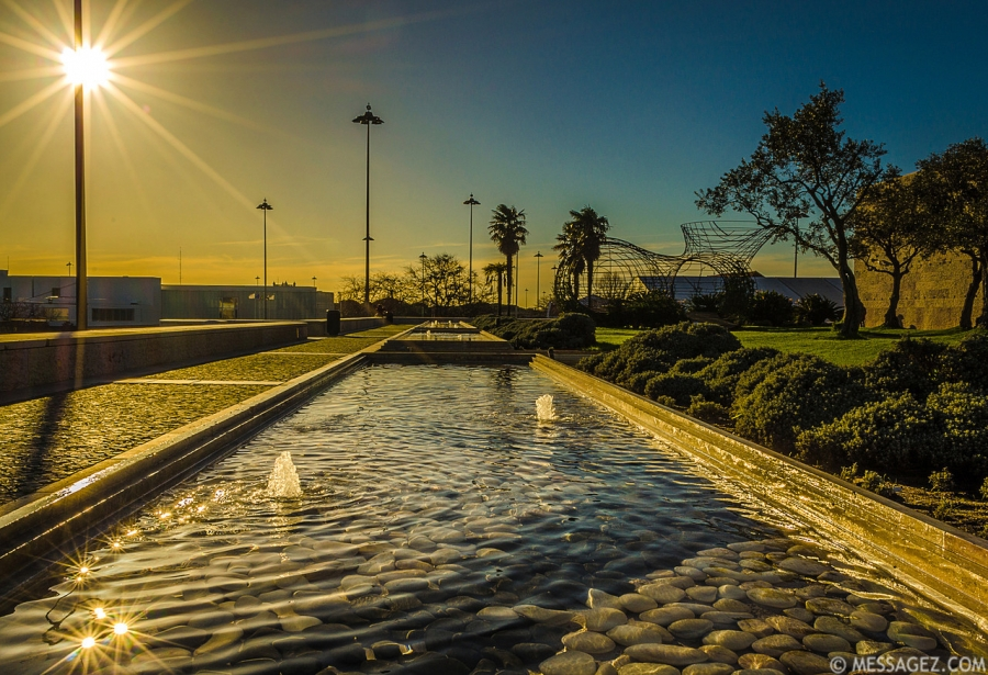 best-of-lisbon-garden-sunshine-art-photography-9-by-messagez-com_