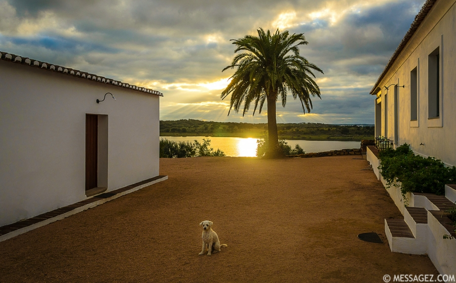 Best of Alentejo Photography 11 By Messagez.com