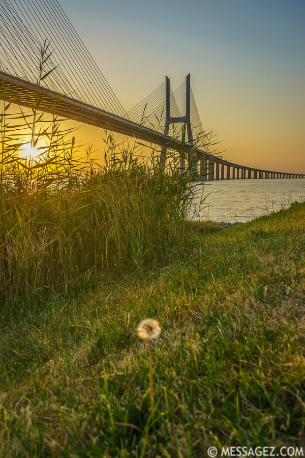 Best of Lisbon Bridge Sunrise Photography 7 By Messagez.com