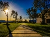 best-of-lisbon-garden-sunshine-art-photography-8-by-messagez-com_