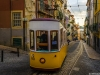 Best of Lisbon Trams Photography 52 By Messagez.com