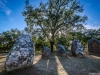 Portugal Cromlech of the Almendres Megalithic Magic Photography 4 By Messagez.com